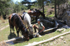 Ruta a caballo, descansando