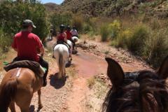 Ruta a caballo en grupo