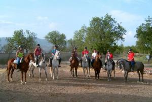 Rutas caballo grupo